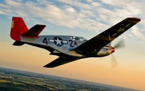 "Many Tuskekee pilots flew the P-51 ""Red tail"" in World War II."